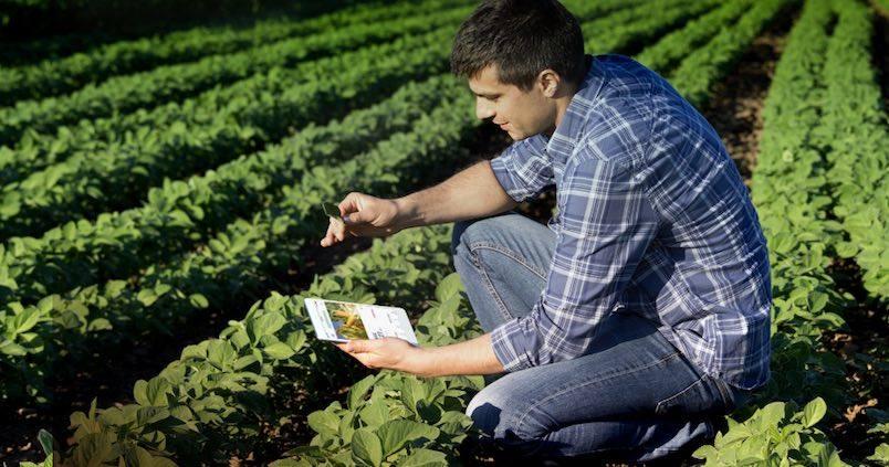 Las claves que te ayudarán a enterarte de todo lo que afecte a tus cultivos y ganados