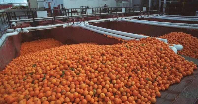 Abierto el periodo de consulta pública para la modificación de la Ley de la cadena alimentaria