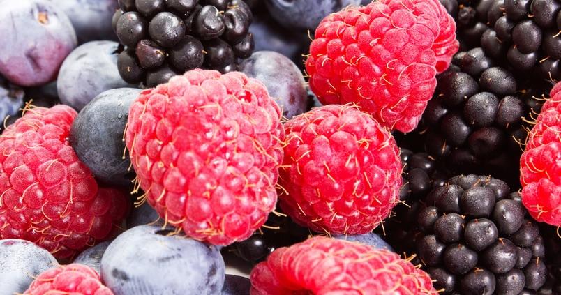 frutos-rojos-recurso