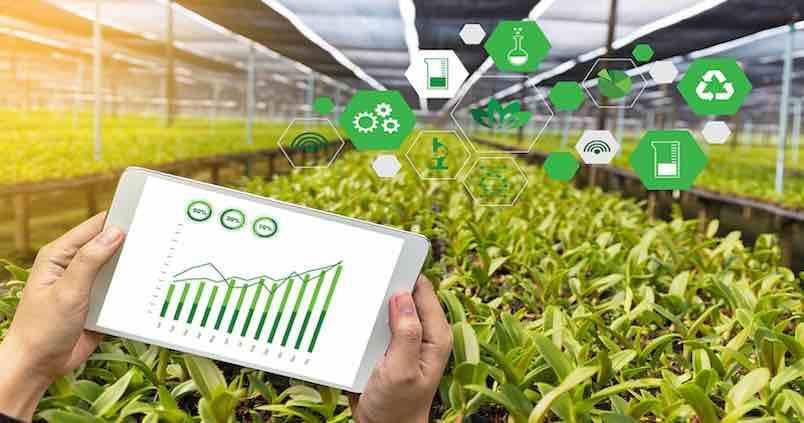 app-bionatura-startup