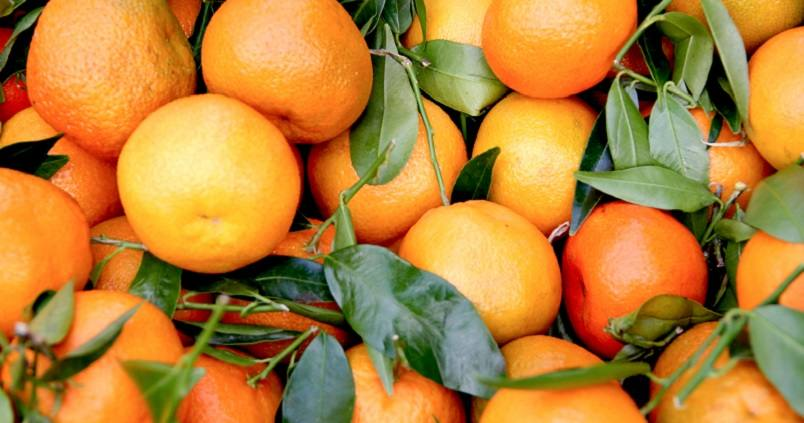 Andalucía superará los 2,18 millones de toneladas de naranja esta campaña