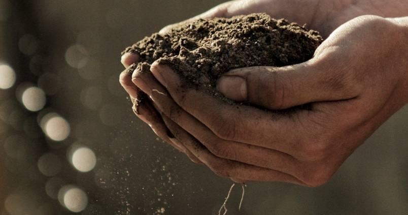 tierra-campo-cultivo