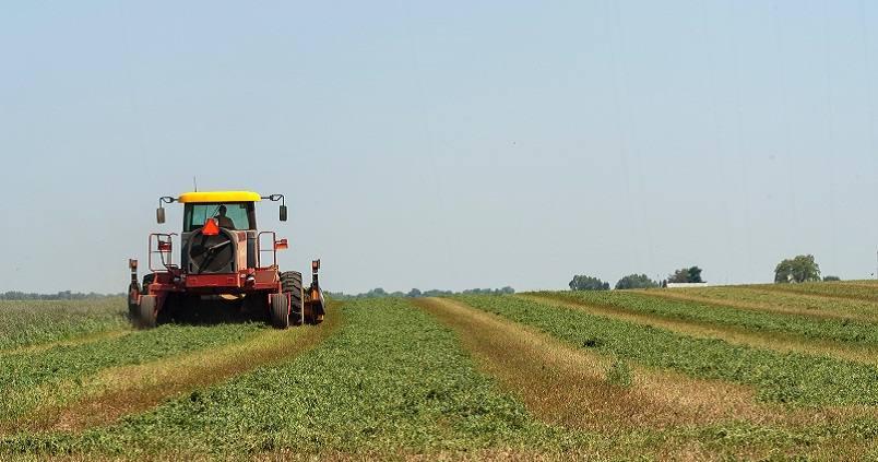 tractor-campo-trabajador