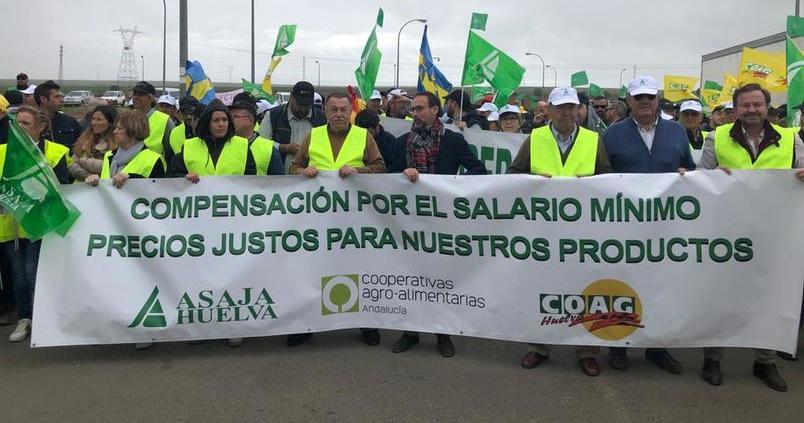 El sector agrario aplaza la protesta en el Puerto de Algeciras por el coronavirus