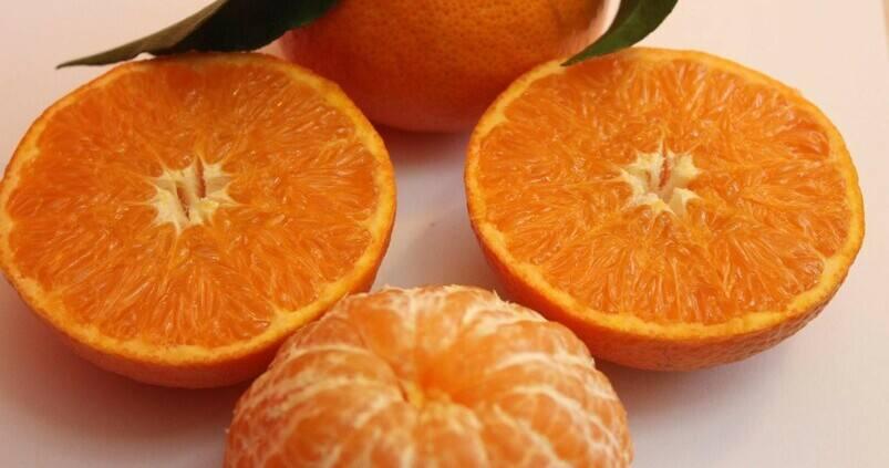 mandarina-protegida-Leanri