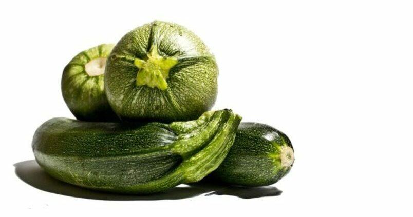 calabacin-hortalizas-horticolas
