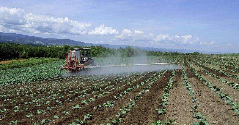riego-aspersion-cultivo