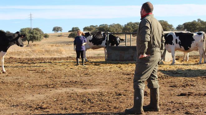 Cooperativas: la fuerza de la unión de agricultores y ganaderos