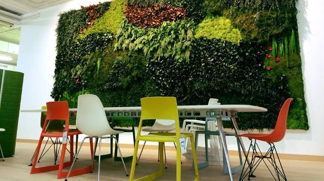 Paisajistas de sevilla y decoraci n de exteriores para su - Jardines verticales sevilla ...