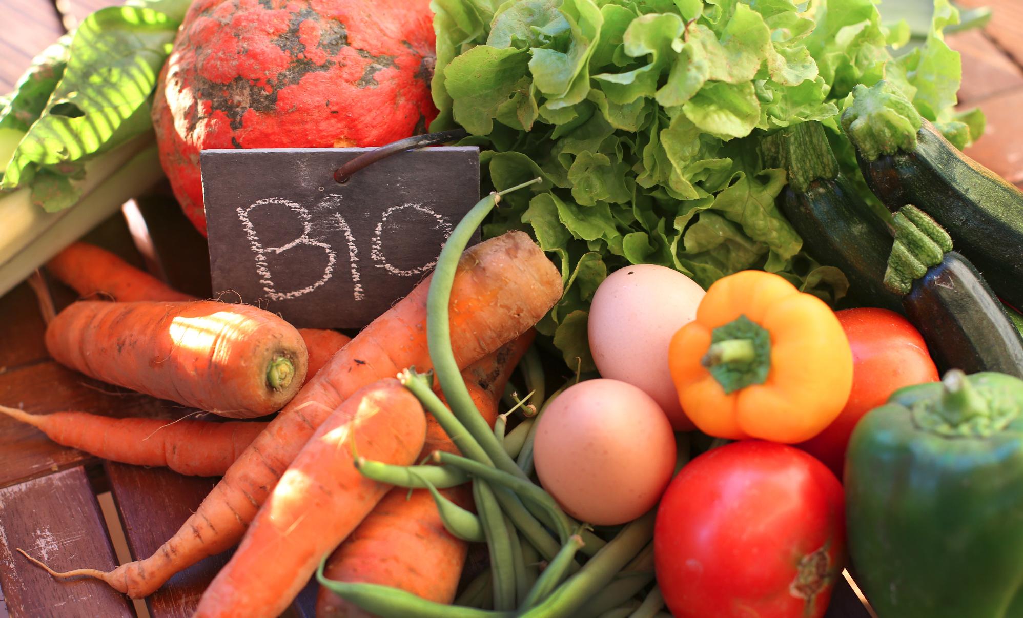 Productos ecol gicos bio y sin gluten en sevilla vida - Luz de vida productos ecologicos ...