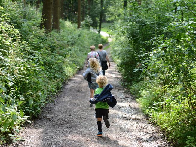 Una excursión para hacer con los niños en primavera
