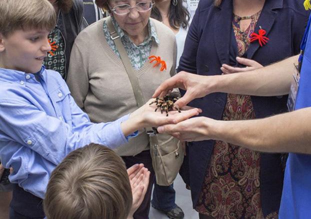 El fascinante mundo de las arañas , en la Casa de la Ciencia