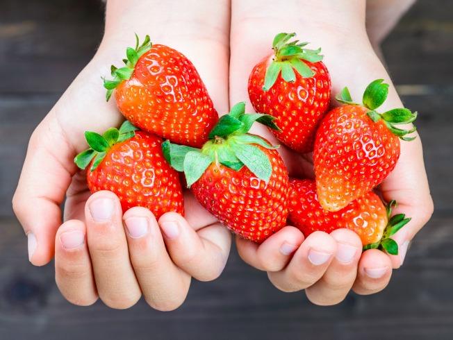 Fresas para postres