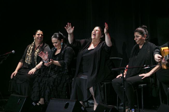 Espectáculo flamenco Pasion. WEB CAJASOL