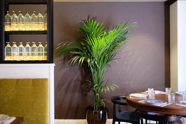 Restaurante Tata Pila en Sevilla. Cuarto de Maravillas