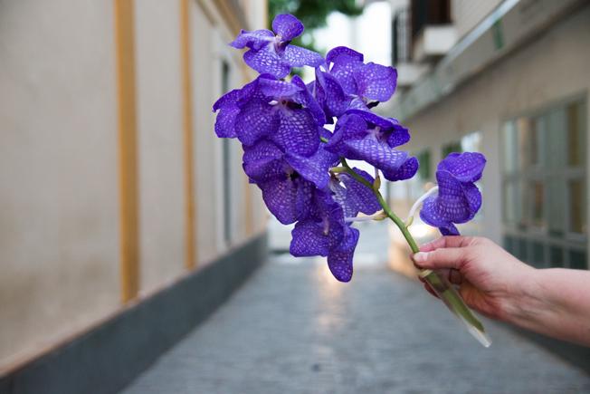cuarto-de-maravillas-flores-bucaro-10
