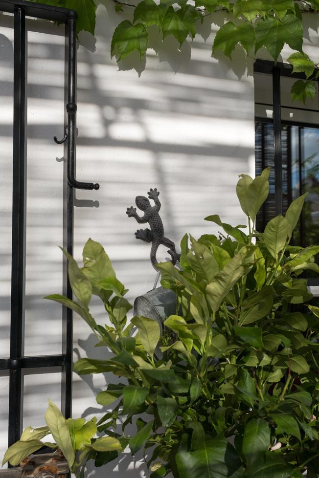 cuarto-de-maravillas-terraza-yela-14