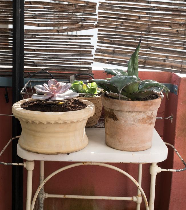 cuarto-de-maravillas-terraza-yela-6
