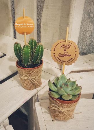 Regalo para bodas: flores y plantas