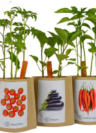 garden-pocket-regalo-navidad