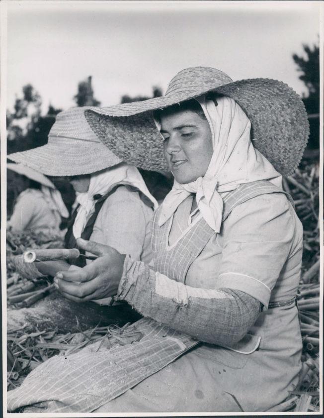 mujer-campo-basabe