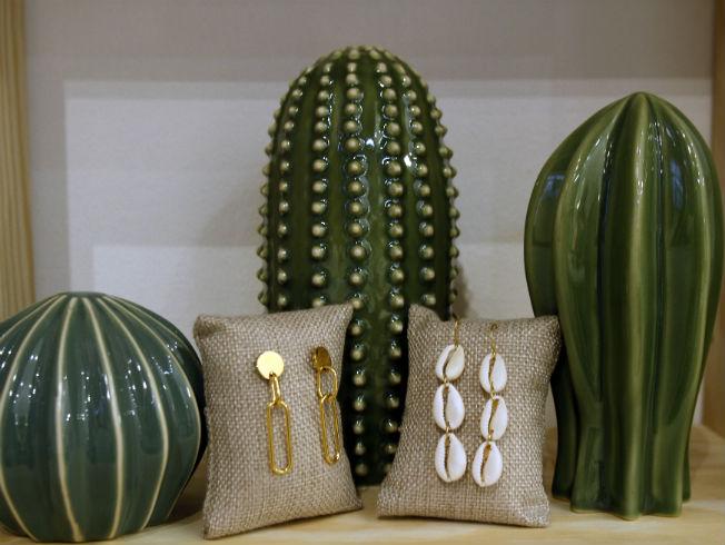 cactus-carambola