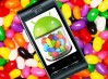 LG publica su calendario de actualizaciones a Jelly Bean