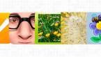 Las mejores aplicaciones para que los alérgicos conozcan los niveles de polen de su zona
