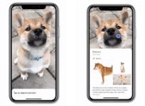 Google Lens ya está disponible en la app de Google para iOS